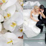 Hochzeit in Hotel Land Gut Höhne Mettmann, Hochzeitsfotografie Mettmann