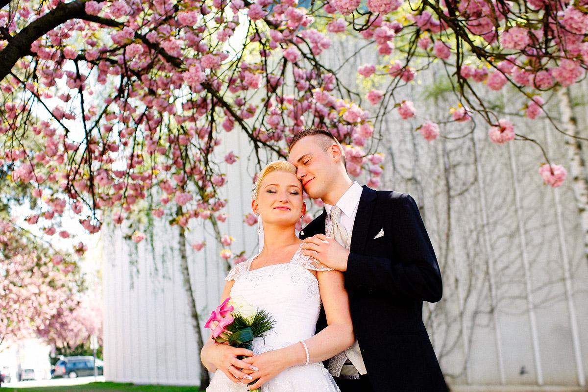 Heiraten in Schwenfurt
